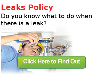 Gateway_leaks_policy