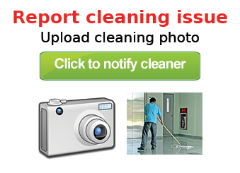 Report_cleaning_issue