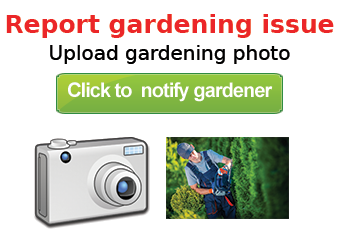 Report_gardening_issue
